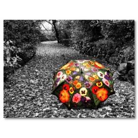 Αφίσα (μαύρο, λευκό, άσπρο, ομπρέλα, φθινόπωρο)